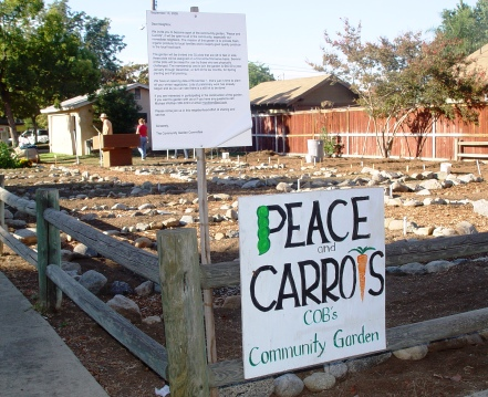 Rent your own garden plot at the Peace & Carrots Community Garden for $40 for the year, or $25 for six months.
