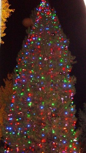 The City Hall Christmas Tree will glow again on Dec. 6.