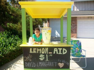 megans-lemonade-stand-for-david-margaret-1