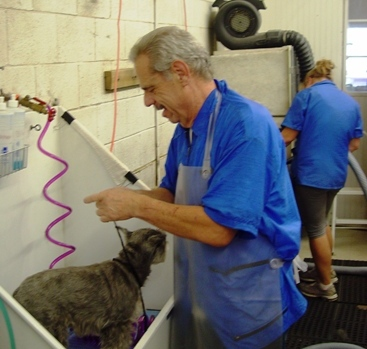 """Despite being named """"Business of the Year,"""" Mark Levy is back at work, satisfying another four-legged customer."""