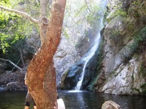 sturtevant-falls